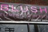 Blush Comsmetics Commercial Storefront